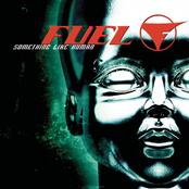 Carátula del disco de Fuel